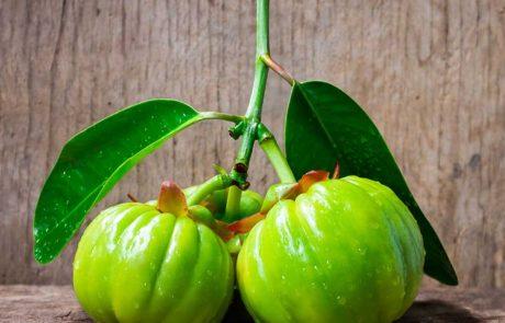 גרסיניה קמבוג'יה: פרי טרופי להרזיה